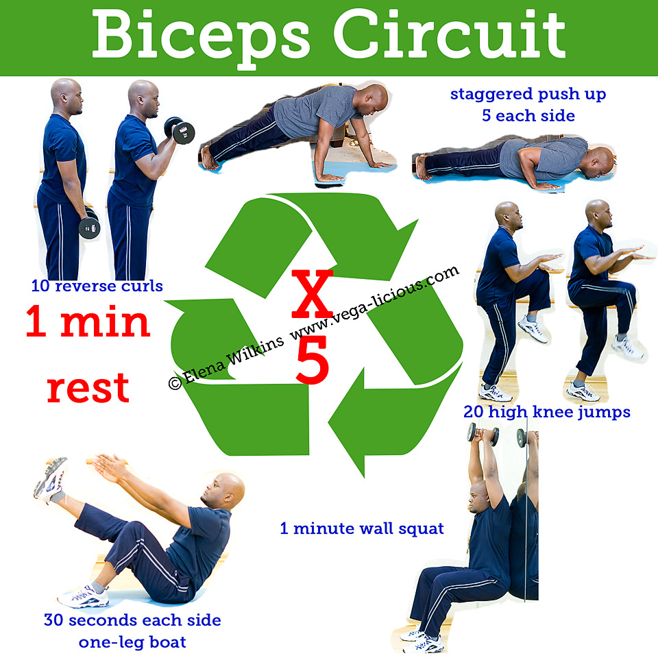 20 Minute Biceps Circuit Training Routine