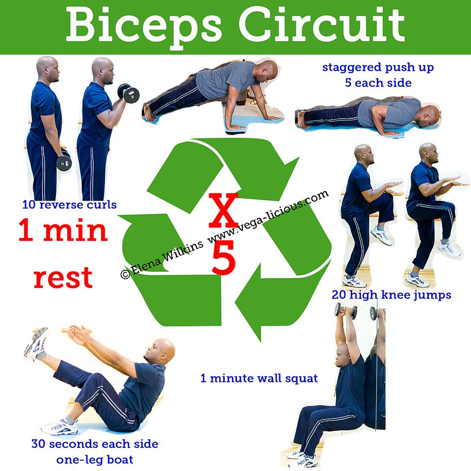 20 Minute Biceps Circuit Training Routine | Vegalicious