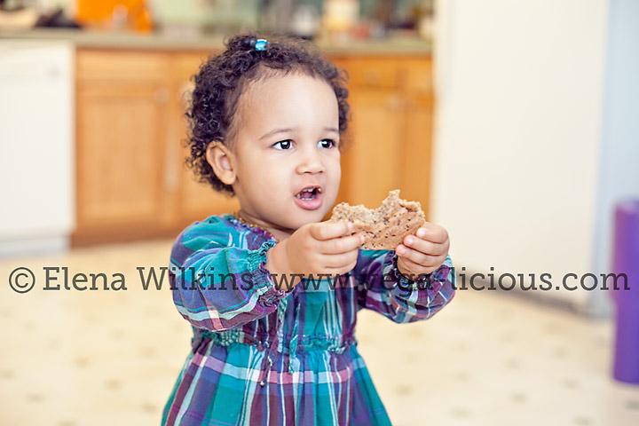 sugar-free-oatmeal-cookie-recipe-8