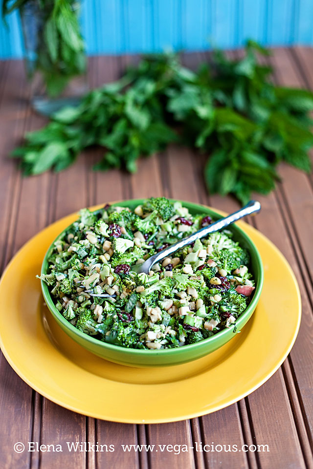 broccoli_salad_008